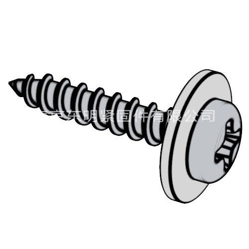 GB/T 9074.19 - 1988 十字槽盤頭自攻螺釘和大墊圈組合件