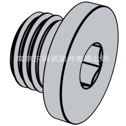 DIN 908 - 2012 內六角圓柱頭喉塞
