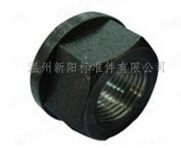 六角带垫螺母DIN6331